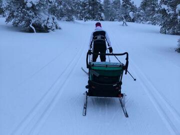 Renting out (by week): Thule chariotlite pyöräkärry+hiihtosetti