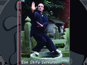 For queries only: CLASES DE KUNGFU DE WUDANG