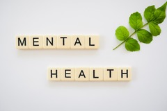 7.5 Credits: Mental Health 101