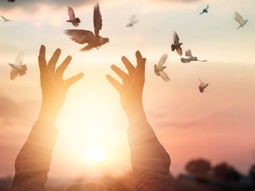 Workshop Angebot (Termine): Ho'oponopono - Freiheit durch Vergebung