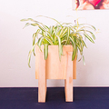 9 Credits: Build Your Own Wood Planter
