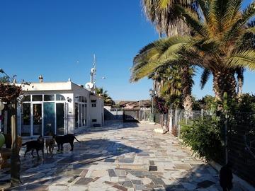 Tauschobjekt: Tauschen Finca Nähe Alicante gegen Haus ca. 100 km Umkreis Köln