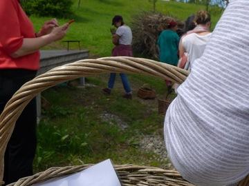 Workshop Angebot (Termine): Streifzug durch ein essbares Paradies: Kräuterwanderung mit Apéro
