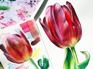 Workshop Angebot (Termine): Botanical Art - Tulpe. Blumen malen mit Aquarell