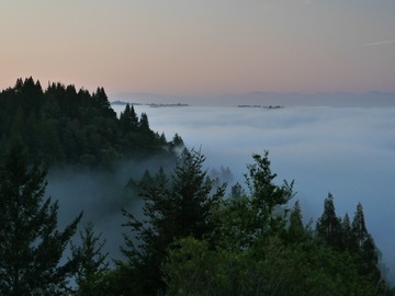 "per night with calendar availability: The ""Crown Jewel"" of the Santa Cruz Mountains. Views from abound!"