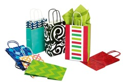 Buy Now: 48 Sets of Bags -7-Pack Petite Gift Bag Assortment