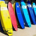 For Rent: BEGINNER SOFTBOARDS.  (Various sizes available)