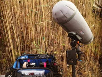 Show Rate Publicly: Location sound recordist