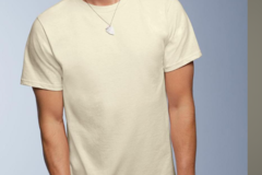 Buy Now: Anvil Natural mens short sleeve t shirt --perfect for printers