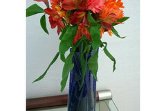 Buy Now: 100 VASES -Plastic Foldable  Flower Vase – Starfish Design