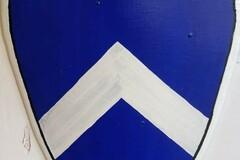 Verkaufen: Kampfschild Reiterschild von Seedorf