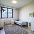 Renting out: Rooms from € 549 in a neat and clean shared flat for females !