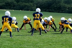 Speakers (Per Hour Pricing): Preventing Injuries in Youth Sports