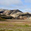 Réserver (avec paiement en ligne): Laugavegur Trek - Iceland