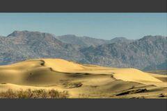 Réserver (avec paiement en ligne): Trekking in Petit Gobi - Mongolia