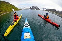 Réserver (avec paiement en ligne): North West Fjords by Kayak - Iceland