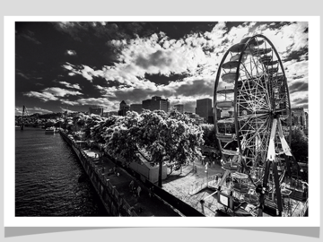 Selling with online payment: The Rose Photographic Print