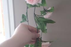 Ilmoitus: Ruusuköynnökset