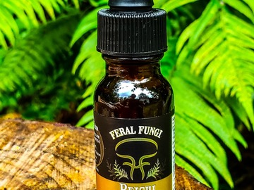 Selling with online payment: 1/2oz Reishi Spagyric Tincture