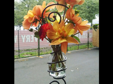Selling with online payment: Flower Vase/Root Starter    Name:  Xavier