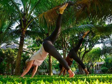 Class Offering: Anusaranga Yoga for Body, Mind & Spirit