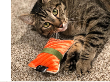 Selling with online payment: Catnip Sushi Toy