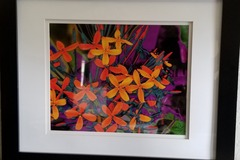 Selling with online payment: Framed Art Photograph