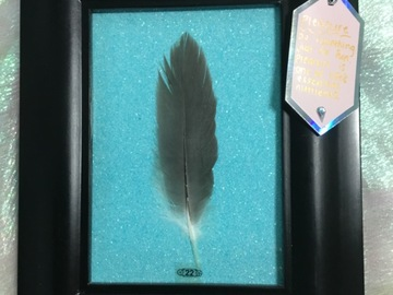 Selling with online payment: Reiki Infused Real Framed Feather with Special Intention
