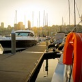 Rent By The Day (Calendar availability option): 14m Berth Rushcutters Bay d'Albora Marinas