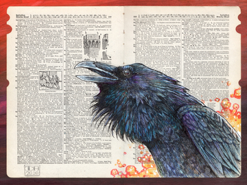 "Selling with online payment: Magical Raven illustration - 11"" x 14"" Archival Print"