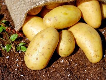 Vente avec paiement en direct: Pomme de Terre Sac 10 kgs