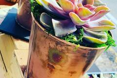 Selling with online payment: Individual Succulents Copper Pot