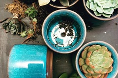 """Selling with online payment: (3) 3"""" Mini Succulent Planters 