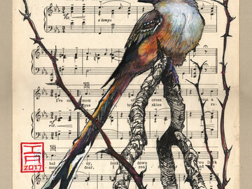 "Selling with online payment: Scissortail Flycatcher illustration -  8"" x 10"" Archival Print"