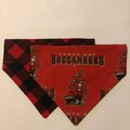 Selling with online payment: Buccaneers Pet Bandana