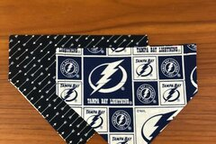 Selling with online payment: Lightning Pet Bandana