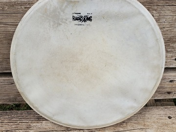 """Selling with online payment: Radio King 14"""" calf skin head"""