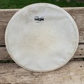 "Selling with online payment: Radio King 14"" calf skin head"