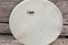 "Selling with online payment: Radio King 13"" calf skin head"