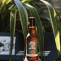 Selling with online payment: Wanaka Beerworks Brewski (6 pack)