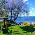 Book on LiveLocal or Other Platforms: Rotorua  cottage with 24/7 direct access to Lake Rotorua