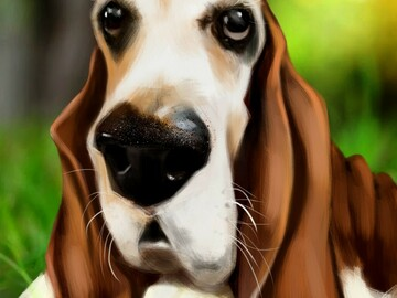 Selling with online payment: Digital Pet Caricature from Your Photo