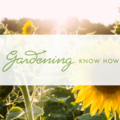 Services: Advertising Solutions for Home & Garden Businesses