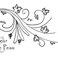 Vente avec paiement en direct: A Fleur de Peau, un rouge léger, croquant, à boire frais !