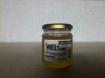 Vente avec paiement en direct: miel toutes fleurs de printemps  pot de 500 grs