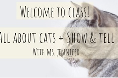 Online Payment - Group Session - Pay per Session: All About Cats + Show & Tell