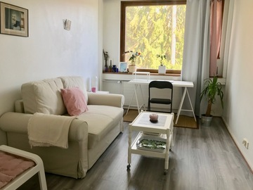 Renting out: Furnished single-room apartment for rent (mid-June to mid-August)