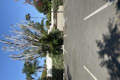 Hourly Rentals: Cedar Sinai Parking lot