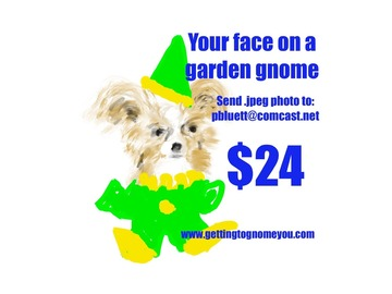 Selling with online payment: Custom Garden Gnomes