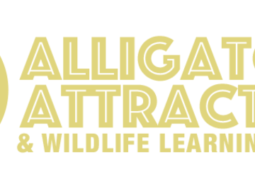 Contact us for more information: Alligator Attraction at John's Pass